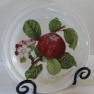 Portmeirion Plate Salad Dessert Pomona Hoary Morning Apple Ellis England 1982