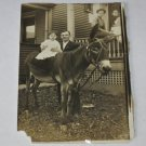 "Vintage 1911 Photo Baby Sitting on Donkey/Burro W/Dad-City Living-3.75"" x 4.75"""