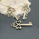 Lot of 100pcs mini brass Key dollhouse miniature toy/jewelry Charm CM651