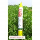 BIG Inflatable Giant Crayon Pencil Summer Swimming Swim Toy