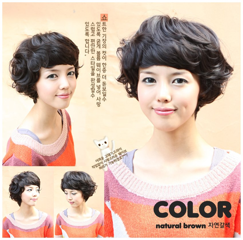 Woman Short  Wave Dark Brown Fashion  Wigs With Wig Cap WD19