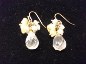 Small Tear Drop Bead Earrings Clear