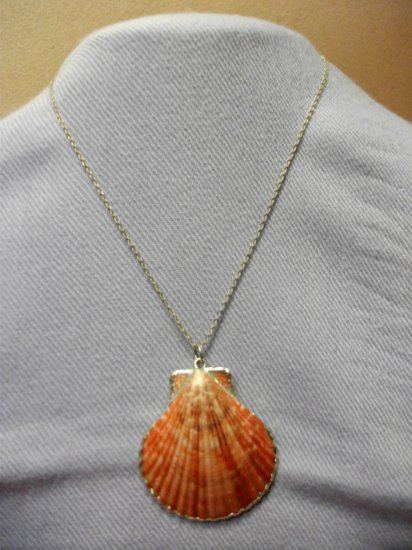 Shell Necklace Style 3
