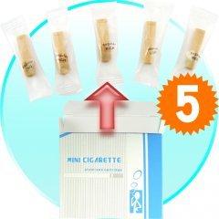 E-Cigarette Refill Pack w/5 Cartridges (for CVSBP-581) New