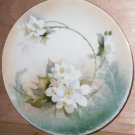 RS Germany 8 inch Plate Hand Painted Porcelain