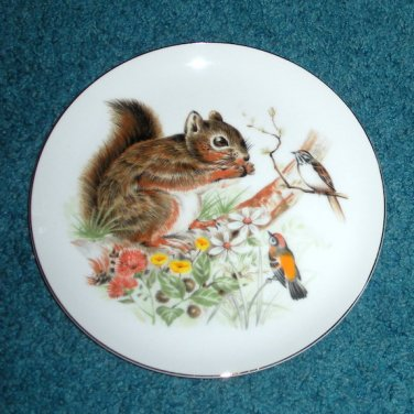 Plate with Squirrel & Birds Wall Hanging, Plaque