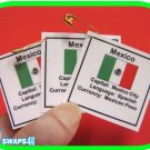 Mexico Fun Facts Scout SWAPS Girl Craft Kit-Swaps4Less
