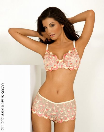 2 piece flower embroidered bra top and matching short.80014