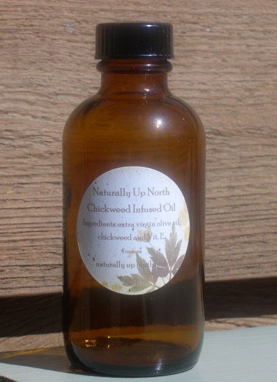 Chickweed Herbal Infused Oil 4 ounces