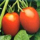Roma Tomato **Organic** Seeds