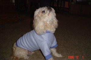 Periwinkle Fleece Pullover
