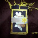 black and yellow mini fold out album