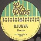"""LODUBS1209012 - Djunya - Elevate (12"""") LO DUBS"""
