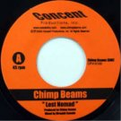 "CPV0100 - Chimp Beams - Lost Nomad (7"") CONCENT PRODUCTIONS"