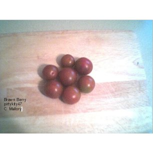 BROWN BERRY CHERRY TOMATO SEEDS ** VEGETABLE**(20) SEED