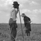 DEPRESSION NEGRO COTTON SHARECROPPER DOROTHEA LANGE PHOTO VINTAGE HISTORIC FSA AFRICAN AMERICAN 30S