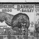 WALKER EVANS PHOTO VINTAGE RINGLING BROS CIRCUS POSTER LION HISTORIC 30S