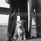 VINTAGE PHOTO DOG CUTE STEVENS AIRPORT 40S MEN AIRPLANE