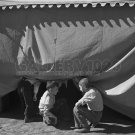 VINTAGE CIRCUS TENT PHOTO BOYS HISTORIC OLD CARNIVAL ROSWELL 30S FSA