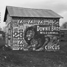 DOWNIE BROS WILD ANIMAL CIRCUS WALKER EVANS POSTER PHOTO LION 3 RING CIRCUS 1930s