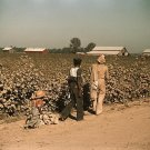 NEGRO COTTON PICKER PHOTO VINTAGE MISSISSIPPI MARION POST WOLCOTT ROAD 30S