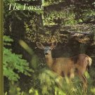 The Life of The Forest Our Living World Of Nature by Jack McCormick