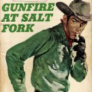Gunfire At Salt Fork by William Hopson