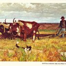 Buffalo Bones Are Plowed Under Postcard by Harvey Dunn