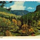 Vintage Postcard  Spearfish Canyon  Black Hills South Dakota