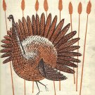 Vintage Sheet Music Turkey In The Straw
