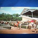 RIVER DOWNS HORSE RACE TRACK POSTCARD, OHIO, UNUSED