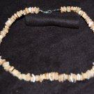 Necklace - Shell Necklace