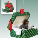Wire Haired Dachshund Green Gift Box Ornament