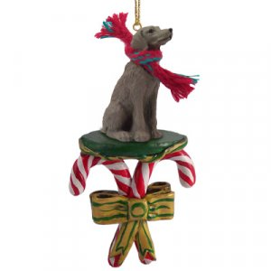 Weimaraner Candy Cane Ornament