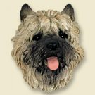 Cairn Terrier, Red Magnet
