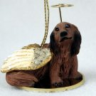 Dachshund, Longhaired, Red Angel