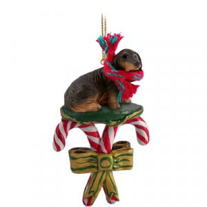 Dachshund, Longhaired, Black Candy Cane Ornament