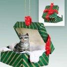 Shorthair Silver Tabby Green Gift Box Ornament