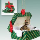 Shorthair Brown Tabby Green Gift Box Ornament