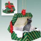 Cornish Rex Blue Green Gift Box Ornament