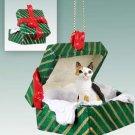Japanese Bobtail Tortoise & White Green Gift Box Ornament