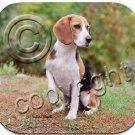 Beagle Mouse Pad