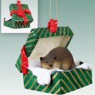 Beaver Green Gift Box Ornament