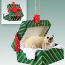 Polar Bear Green Gift Box Ornament