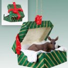 Moose, Cow Green Gift Box Ornament