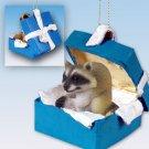 Raccoon Blue Gift Box Ornament