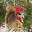 Squirrel, Red Christmas Ornament