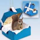Squirrel, Red Blue Gift Box Ornament