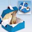 Coyote Blue Gift Box Ornament