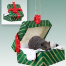 Hedgehog Green Gift Box Ornament